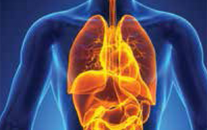 2013 Fall Symposium: Idiopathic Pulmonary Fibrosis and Pulmonary Complications of Scleroderma
