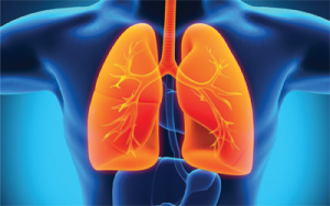 2015 Fall Symposium: Idiopathic Pulmonary Fibrosis & Pulmonary Hypertension: Advances, Diagnosis & Management